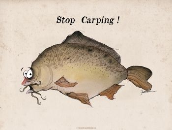 stop carping - signed print